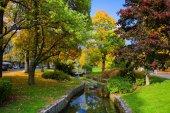 Autunno nel parco centrale spa - piccolo ovest Boemia centro termale Marianske Lazne (Marienbad) - Repubblica Ceca