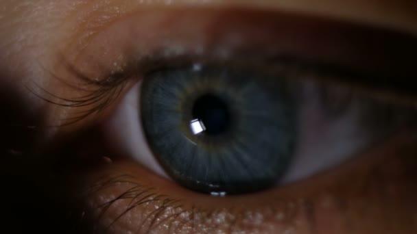Beautiful blue eye closeup, 4k
