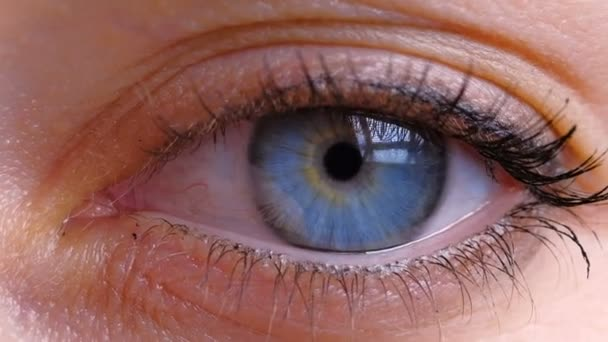 beautiful blue eye with long eyelashes and wrinkles opens