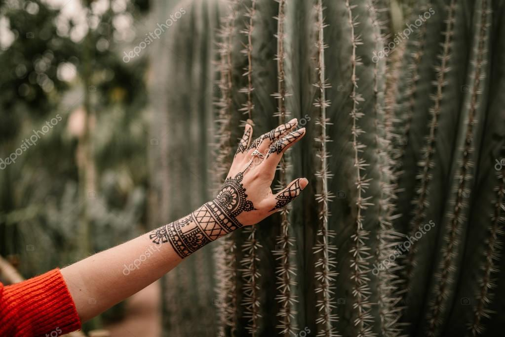 Hand touching a cactus. Hand with henna tattoo touching a cactus
