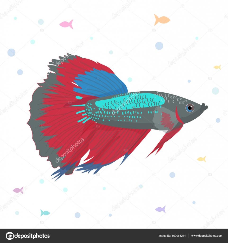 Vector aquarium fish silhouette illustration. Colorful cartoon flat ...