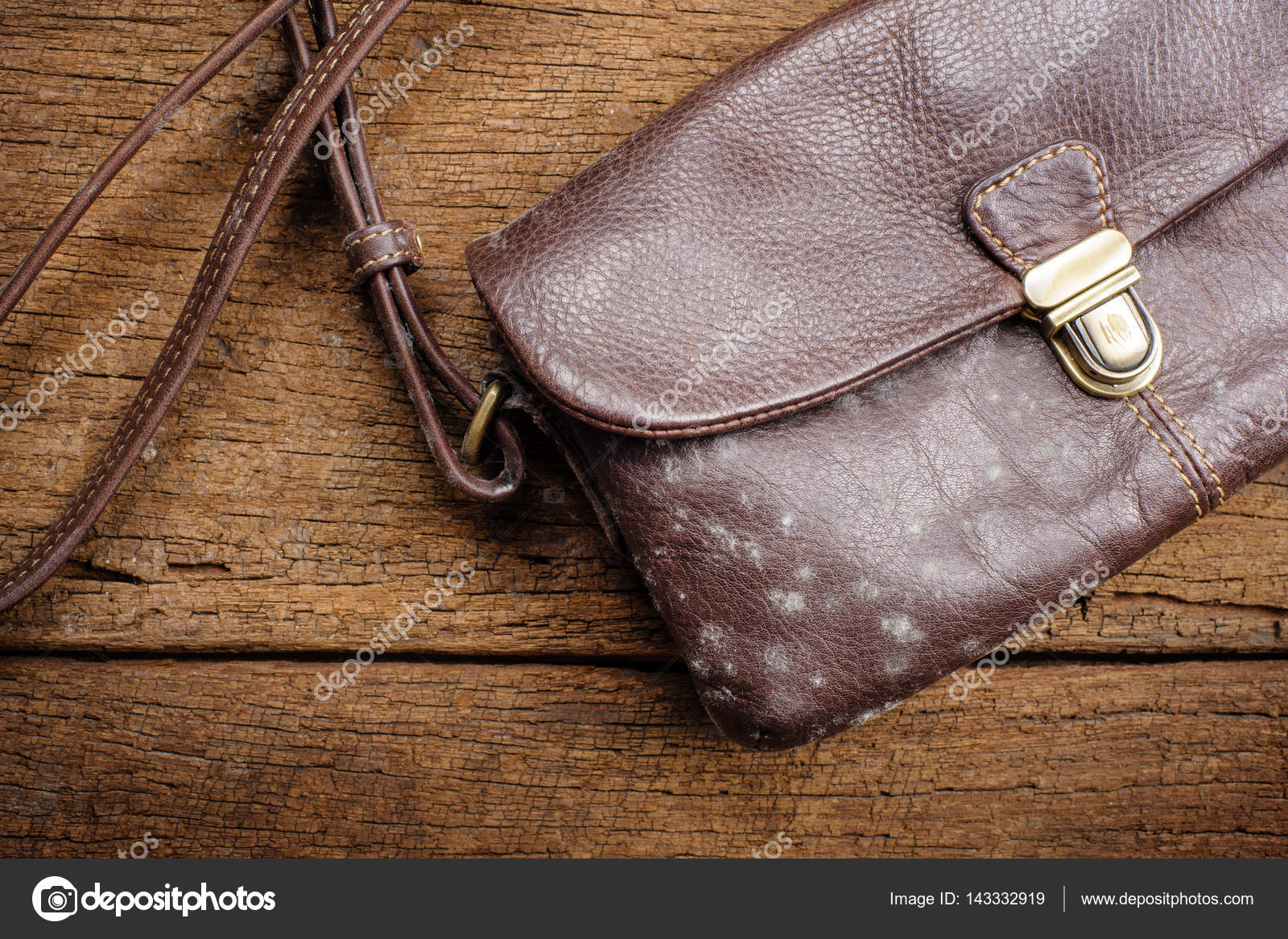 Bekannt Schimmel an Tasche — Stockfoto © norgallery #143332919 LL31
