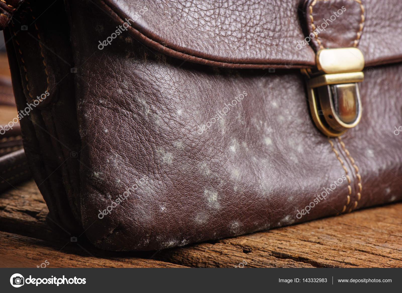 Bekannt Schimmel an Tasche — Stockfoto © norgallery #143332983 CE22