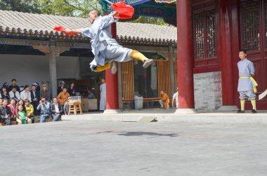 Shaolin Monks Demonstration 7