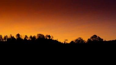 Time lapse sunrise over trees