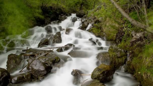 Zeit-Zeitraffer-Wasserfall mit üppigen grünen Blättern