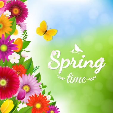 Spring Time Postcard