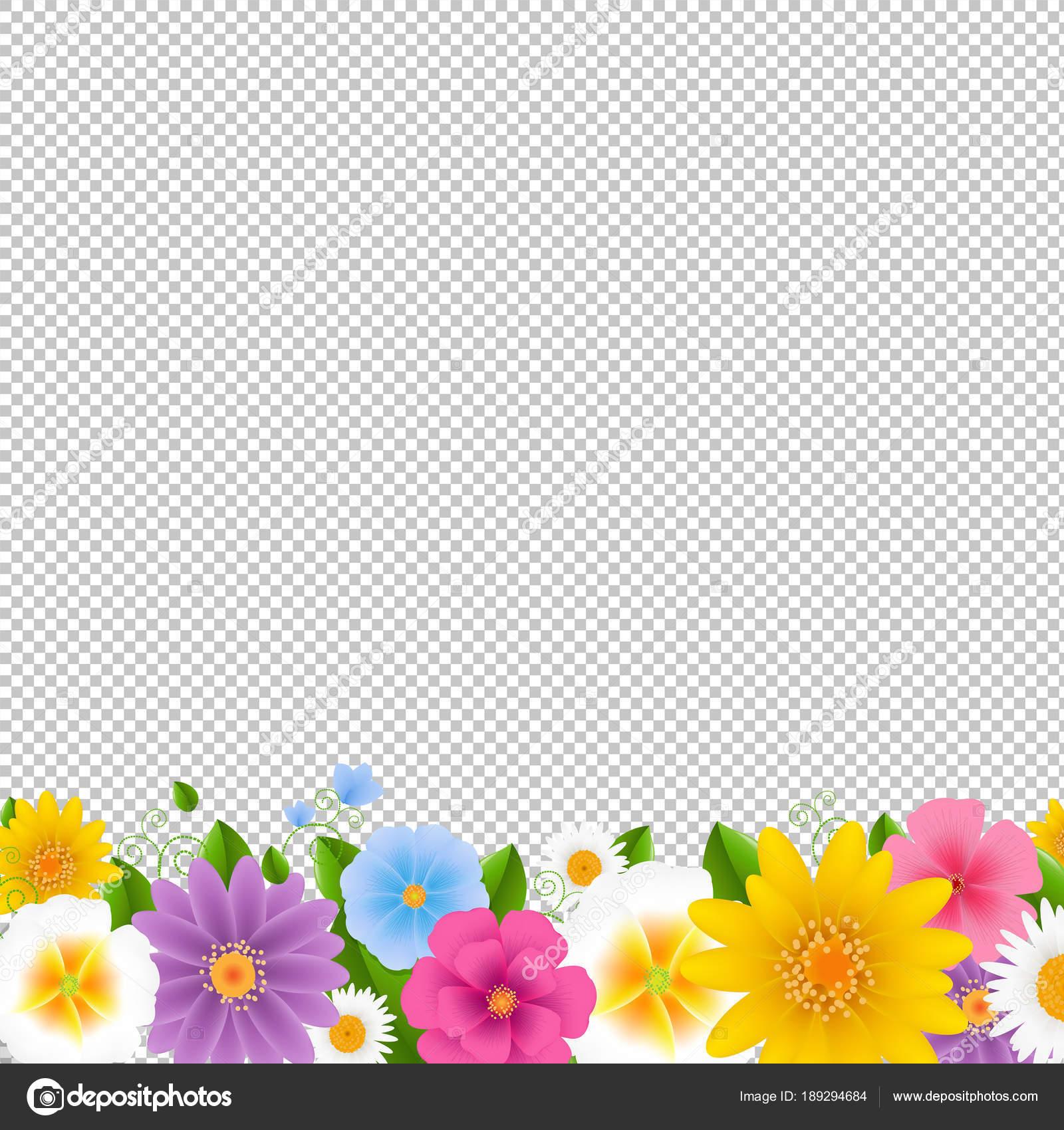 Flowers Border Transparent Background Gradient Mesh Vector Illustration Stock