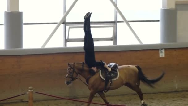A man riding a brown horse. Vaulting and Trick riding. A man riding a horse upside down.