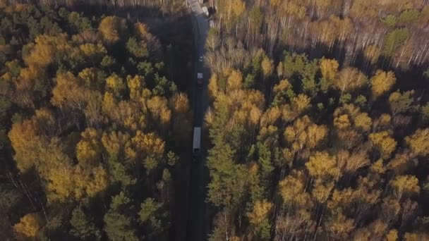 Nákladní vozy a auta se pohybují na příměstskou silnici přes podzimní les