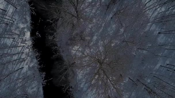 Winter Luftbildaufnahmen Luftbild Drohne im städtischen aufgegeben Stadtpark