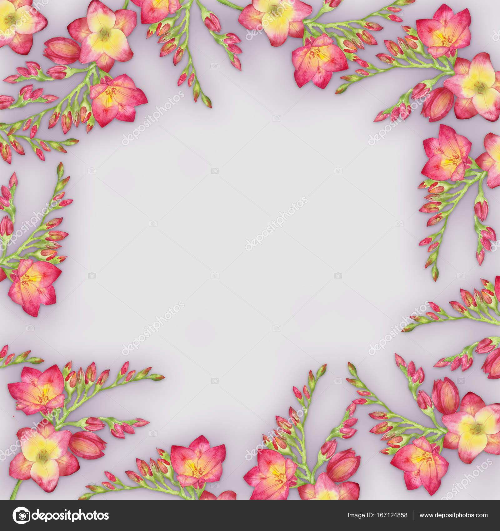 Цветы на авито в йошкар-оле