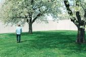 Egy fiatal csípő, többek között a cherry blossom egy parkban.
