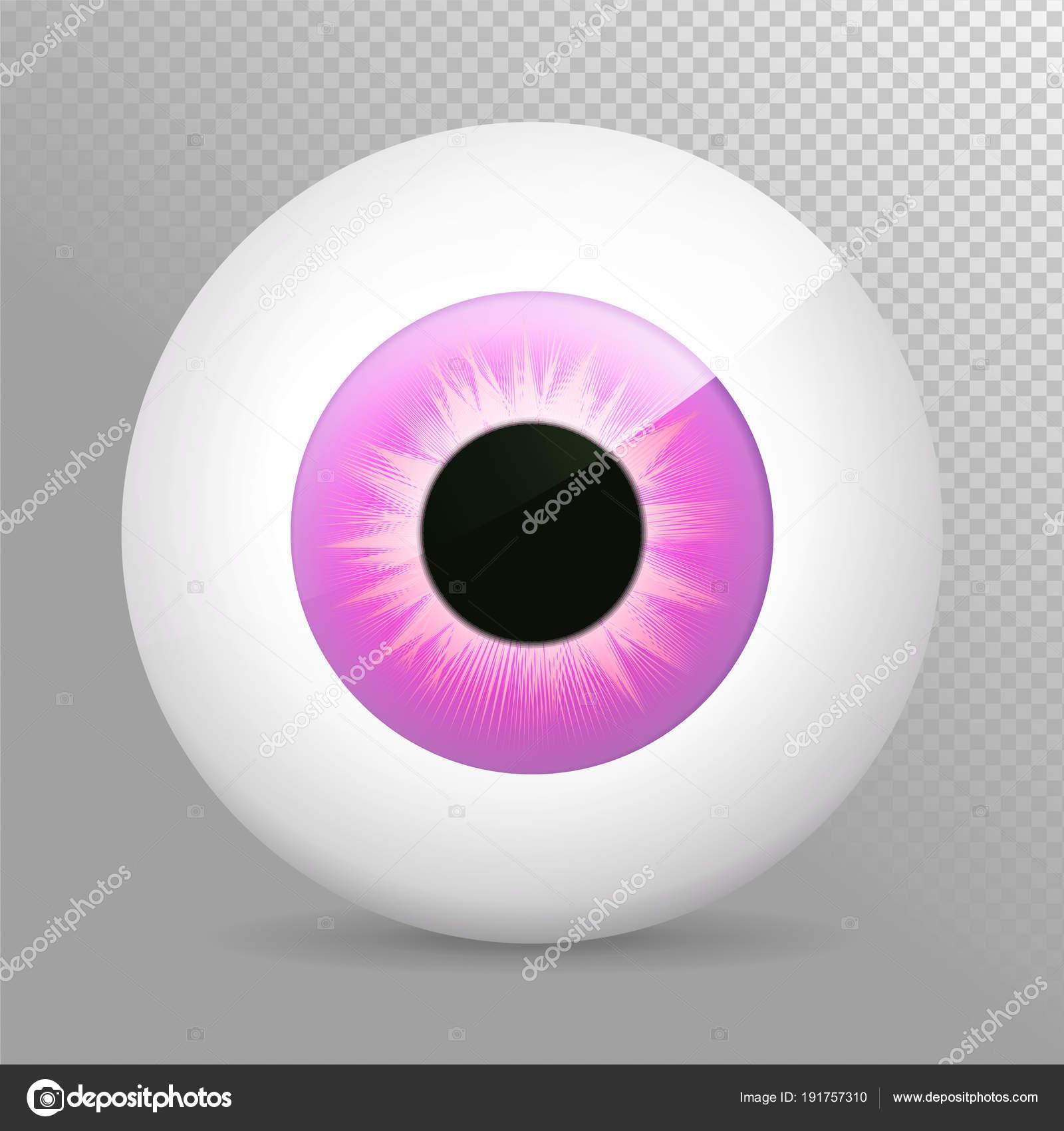 Auge, lila. Realistische 3d Violet Augapfel-Vektor-Illustration ...