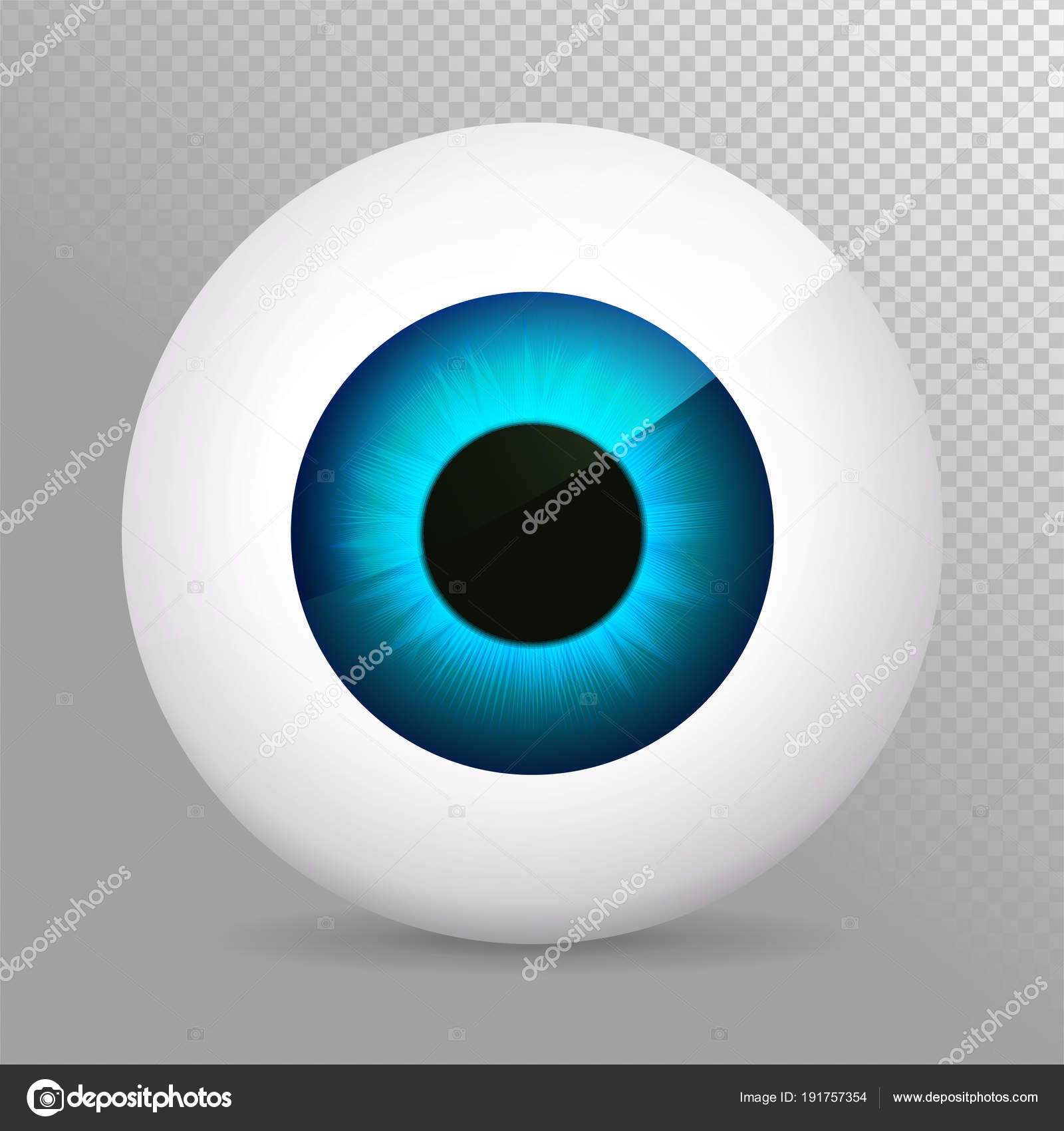 Eye, blue. Realistic 3d indigo eyeball vector illustration. Real ...