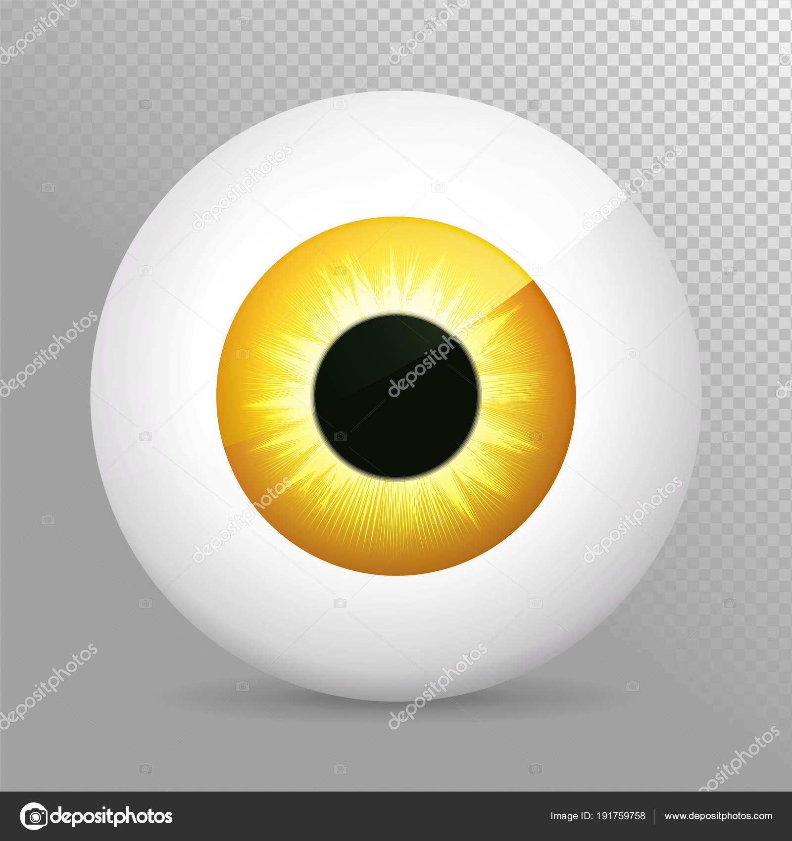 Auge, gelb. Realistische 3d orange Augapfel-Vektor-Illustration ...