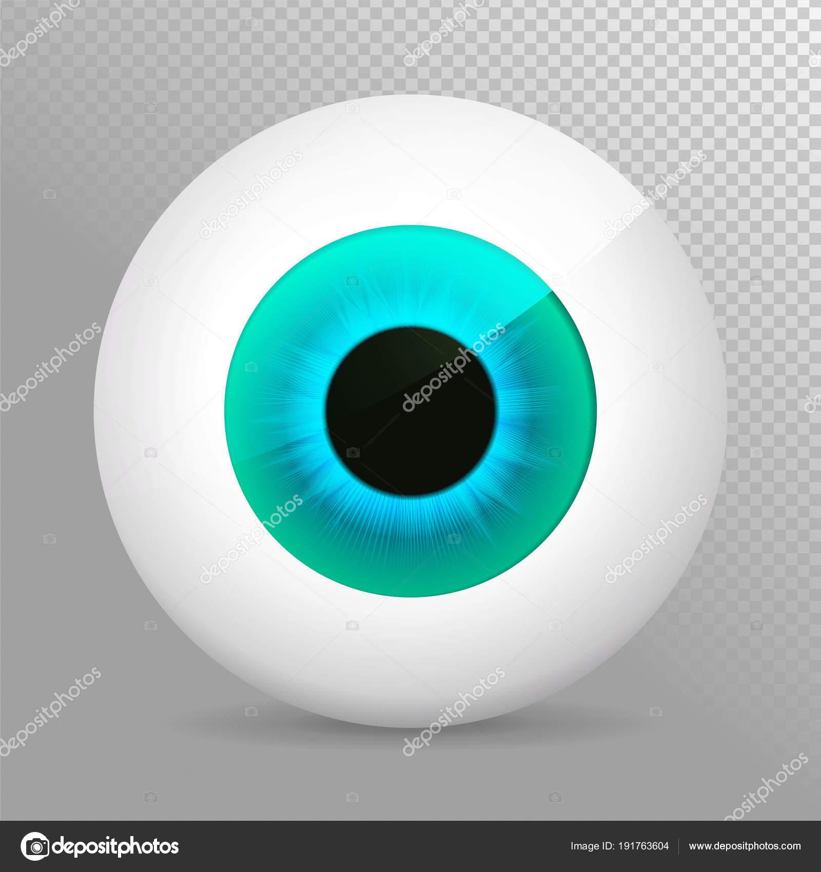 Ojo, azul. Globo ocular azul 3d realista vector ilustración. Esfera ...