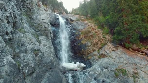 Waterfall with troubled water in mountain forest