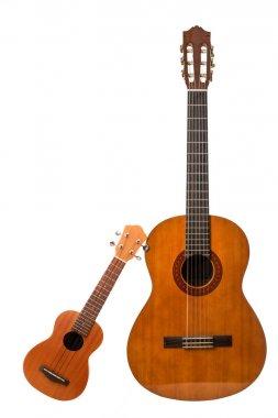 acustic guitar and ukulele isolated in white background