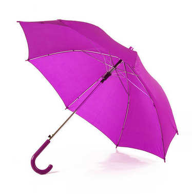 isolated purple umbrella in white background