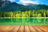 pohled na alpské jezero
