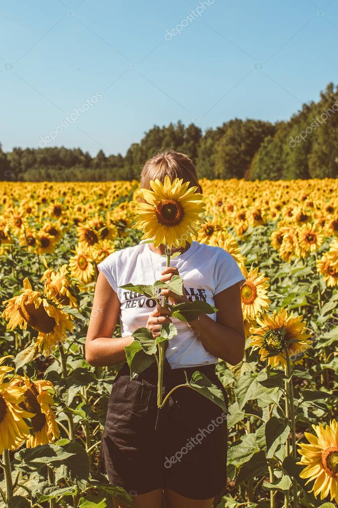Beautiful stylish hippie girl on the sunflower field