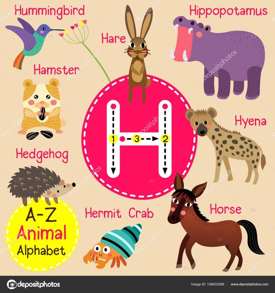 かわいい子供動物園アルファベット h 手紙子供の英語の語彙のベクトル