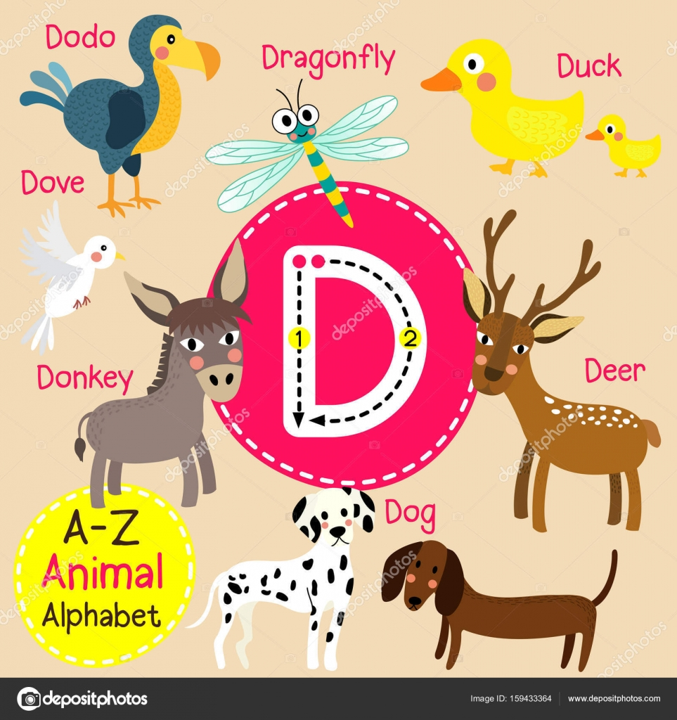 cute children zoo alphabet d letter tracing of funny animal