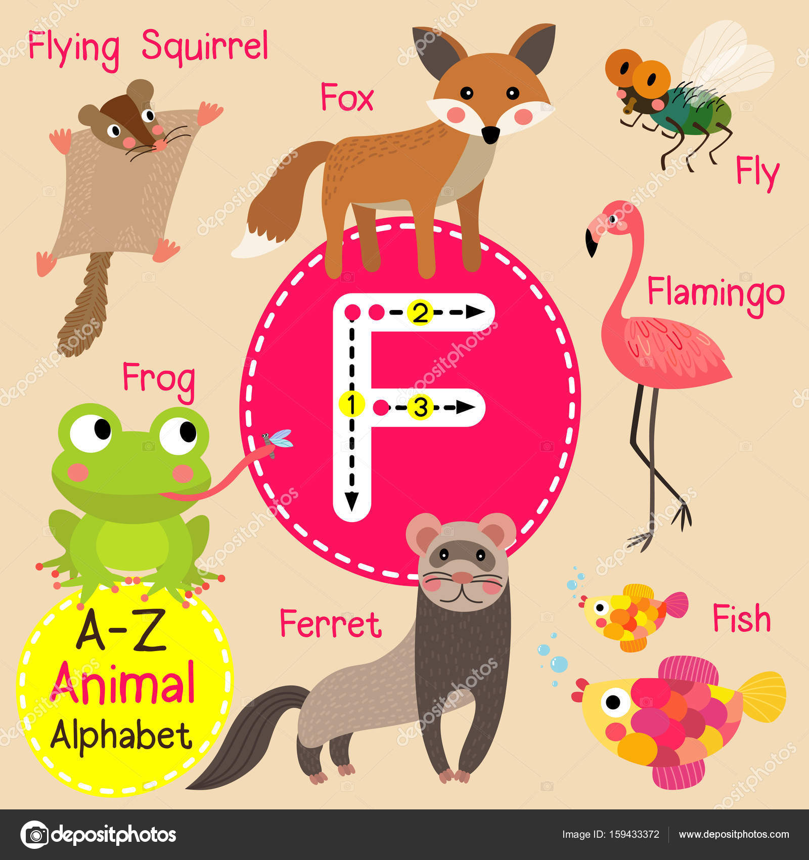 Flying Squirrel Stock Vectors Royalty Free Advanced Origami Fox Instructions Diagram Of The Cute Children Zoo Alphabet F Letter Tracing Funny Animal Cartoon For Kids Learning English Vocabulary