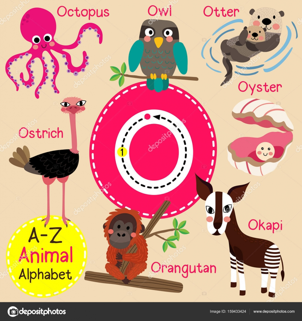 animal kids-animals-english words-learn alphabets-how to ...