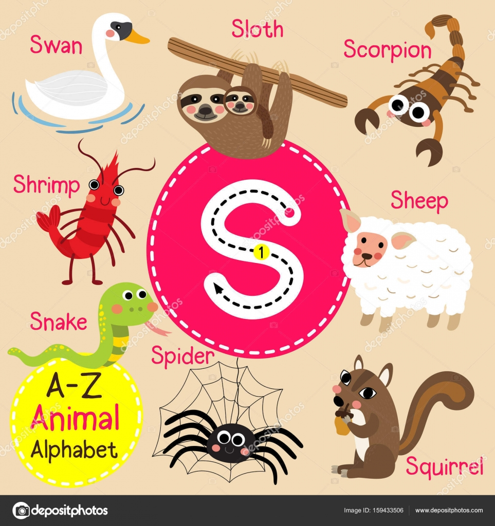 cute children zoo alphabet s letter tracing of funny animal