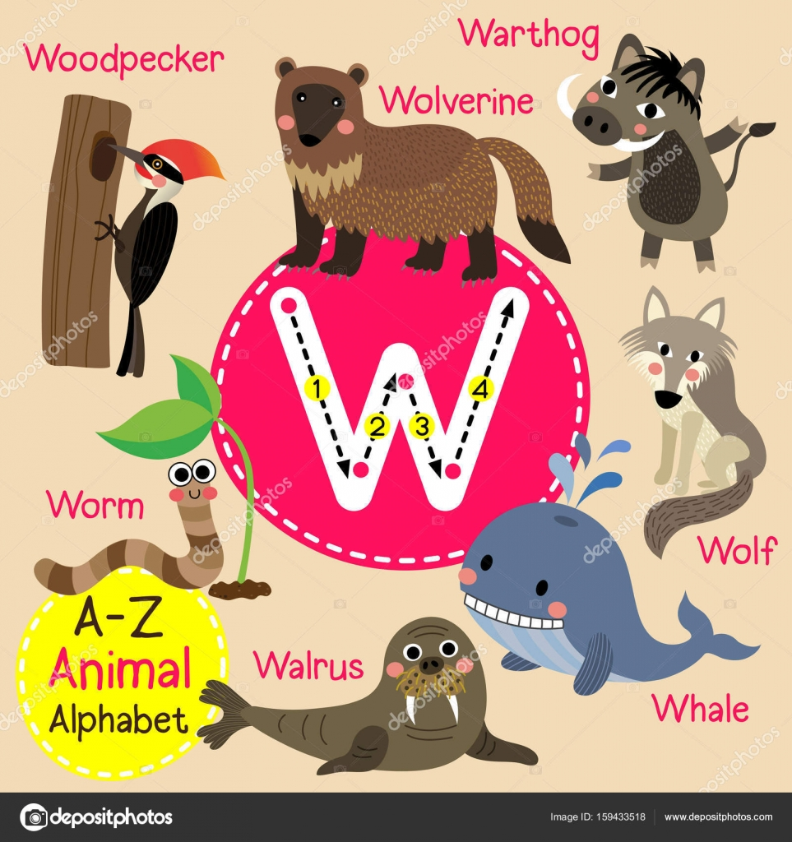 Animals | LearnEnglish Kids - British Council