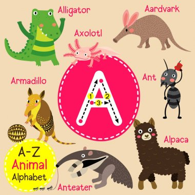 Cute children zoo alphabet A letter tracing of funny animal cartoon for kids learning English vocabulary vector illustration.