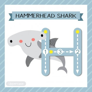 Letter H uppercase cute children colorful zoo and animals ABC alphabet tracing flashcard of Hammerhead Shark for kids learning English vocabulary and handwriting vector illustration.