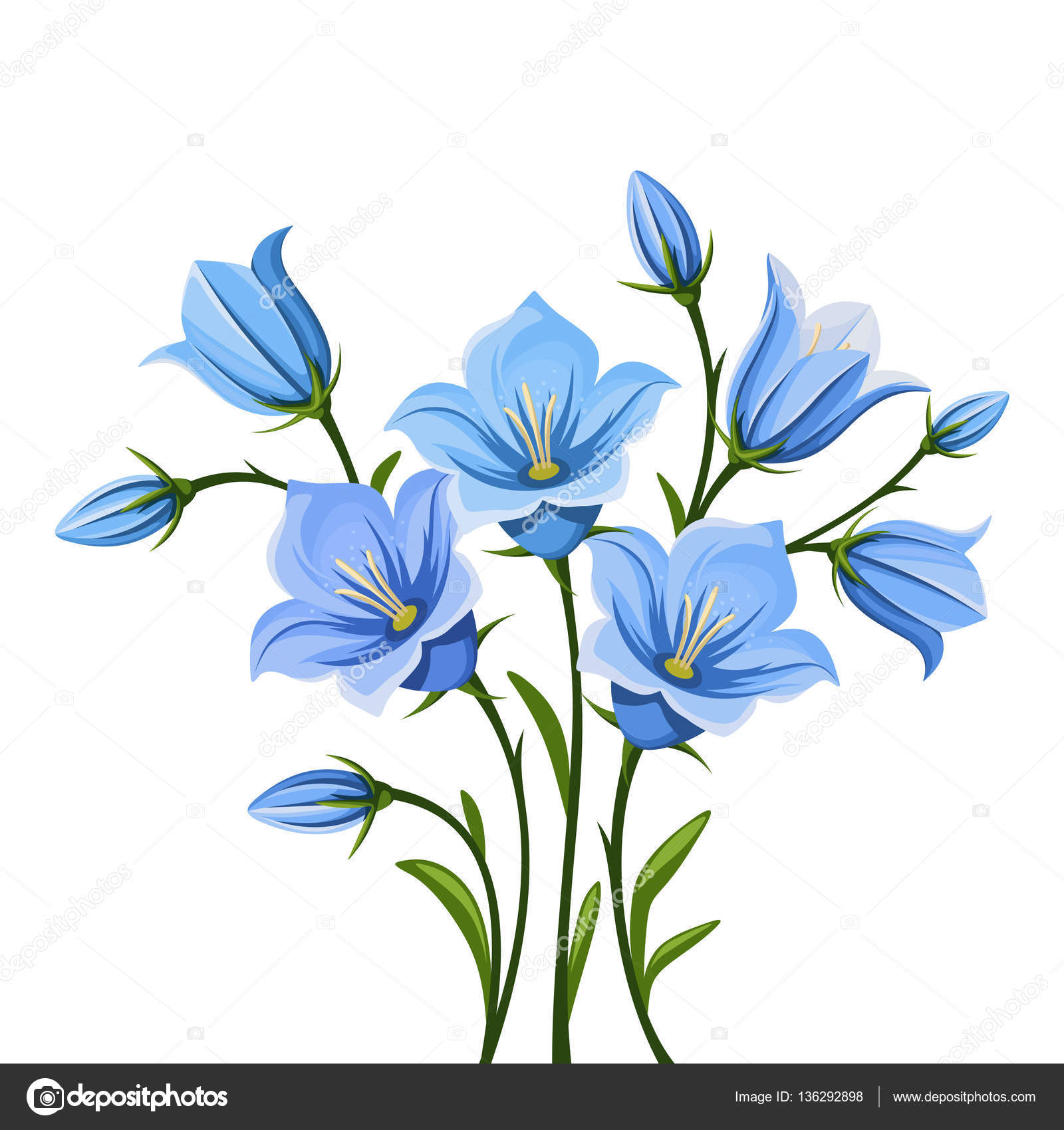Bluebell flowers vector illustration stock vector naddya vector blue bluebell flowers isolated on a white background vector by naddya mightylinksfo Gallery