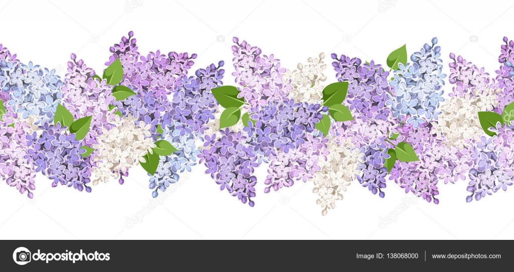 Flores Vectoriales Con Fondo Transparente: Fondo Transparente Horizontal Con Flores De Color Lilas