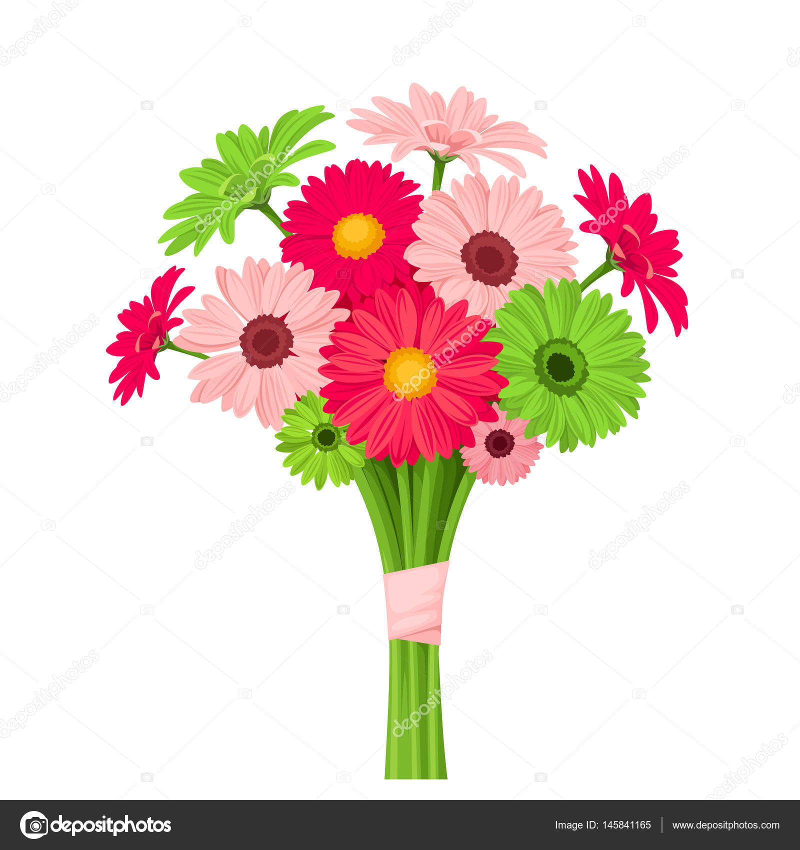 Bouquet Of Pink And Green Gerbera Flowers Vector Illustration