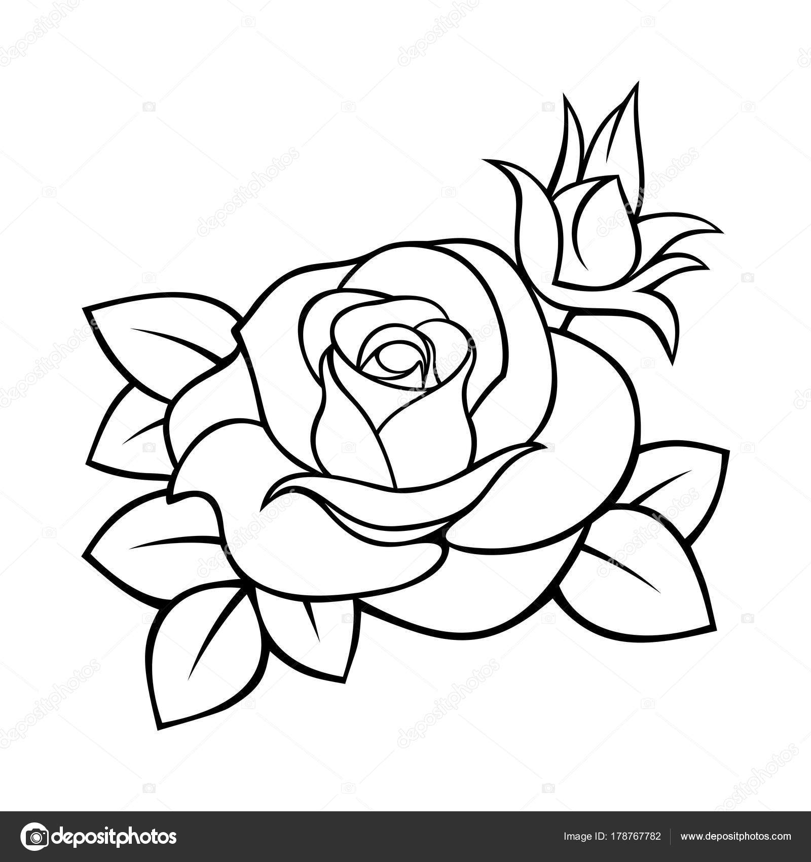 Vector black white contour drawing rose stock vector naddya vector black and white contour drawing of a rose vector by naddya mightylinksfo