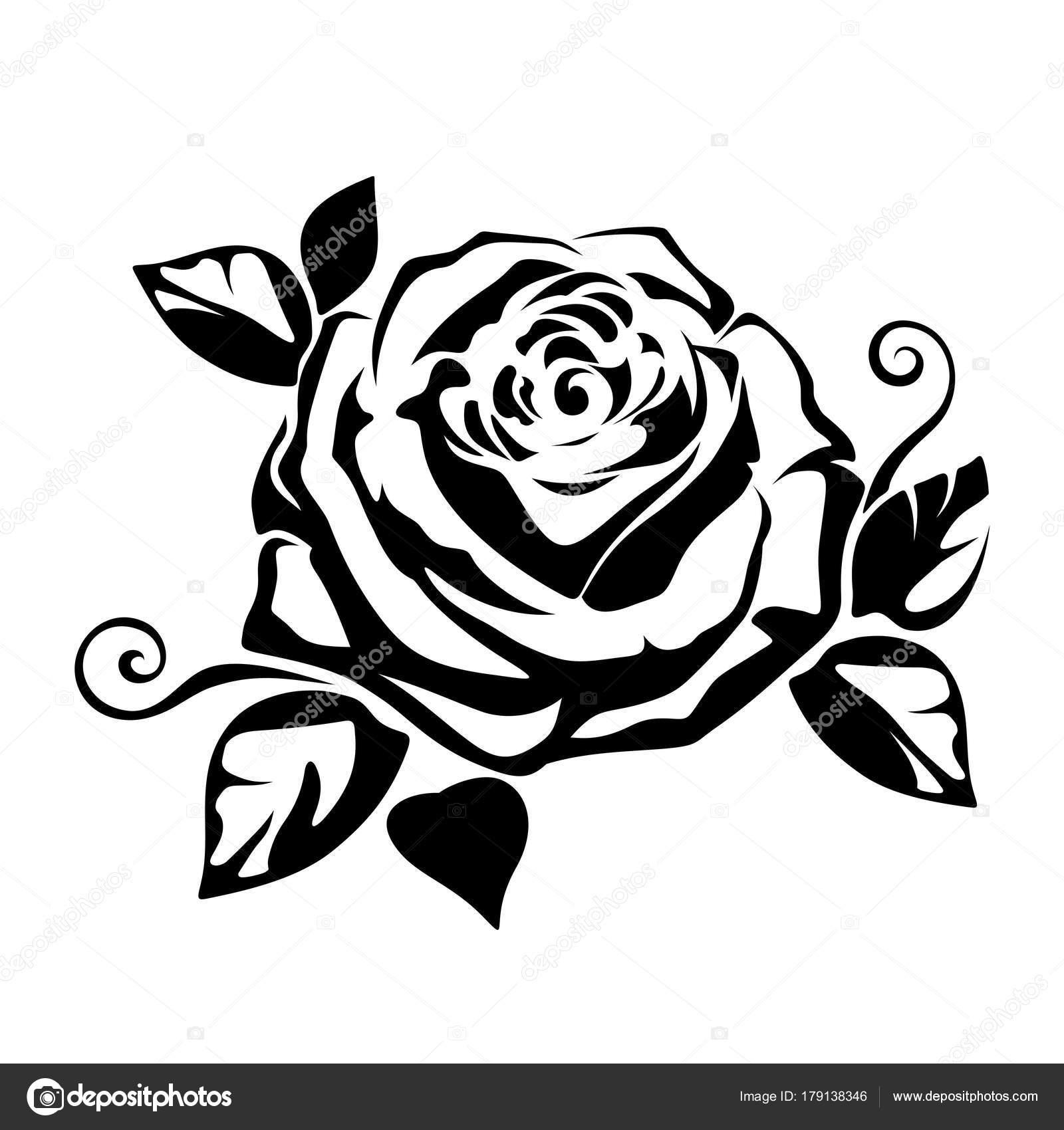 Sfondo Con Una Rosa Siluetta Nera Vettore Una Rosa Sfondo Bianco