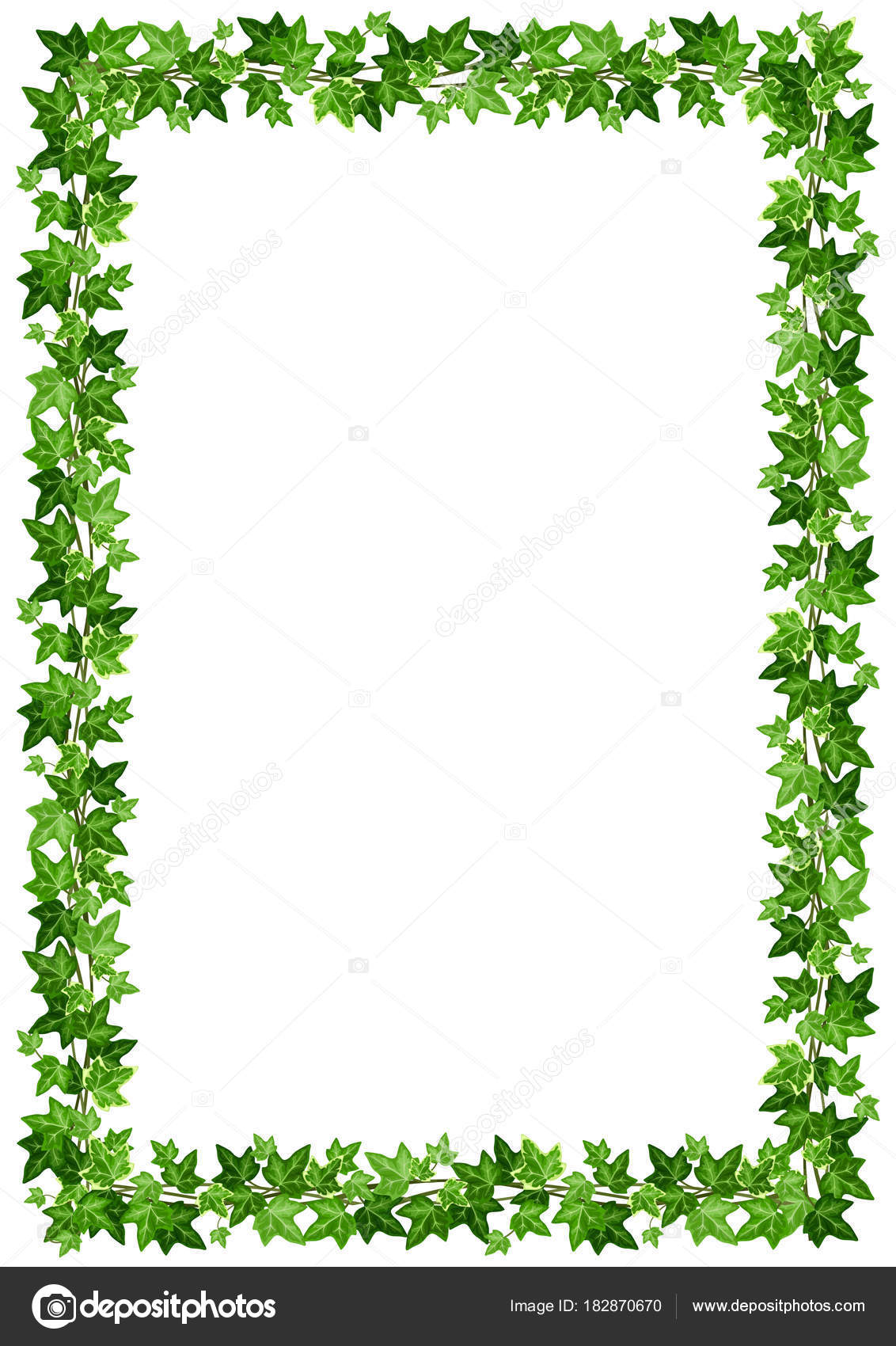 Vector Background Frame Green Ivy Leaves White Background — Stock ...