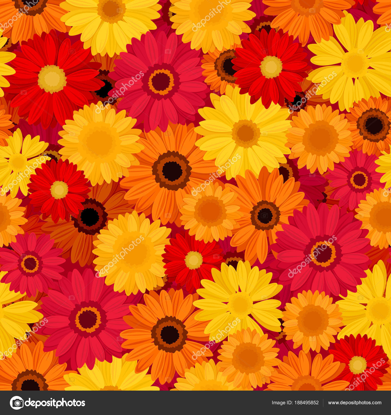 Vector Seamless Pattern Red Orange Yellow Gerbera Flowers Stock