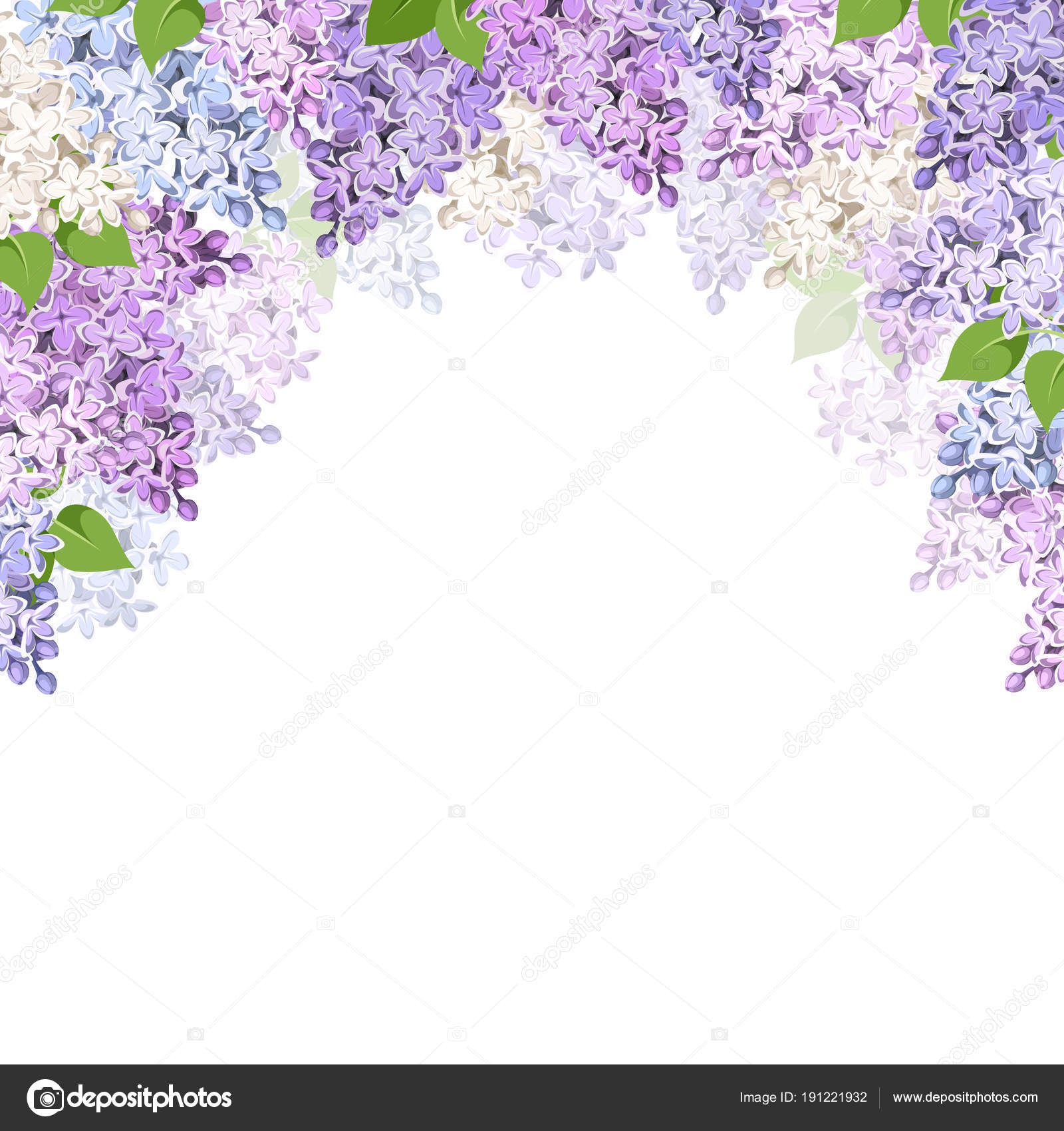 Vector Background Purple Pink Blue White Lilac Flowers Stock