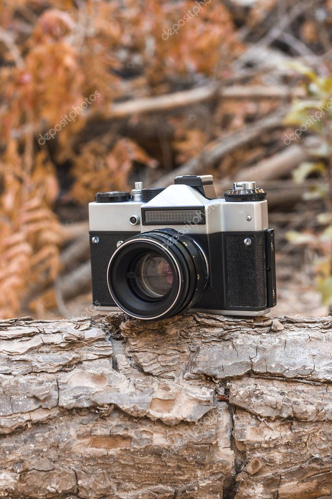 Jordan, Amman, 08/10/2017. Old film camera (SLR) Zenith with lens Helios-44M on a branch in the forest