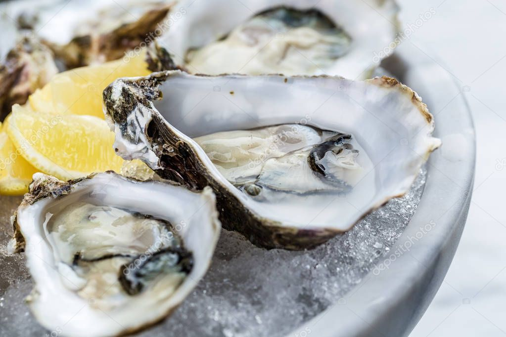 Fresh oysters platter with sauce and lemon