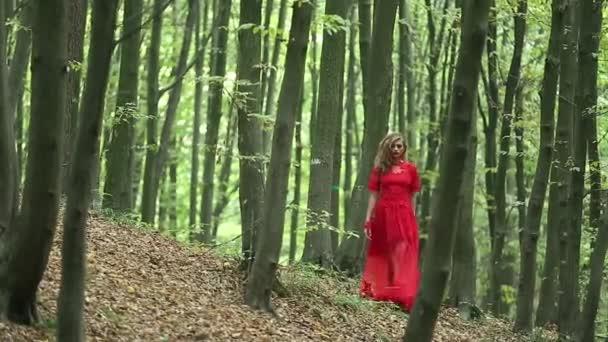 Krásná žena chůze lesem zelené