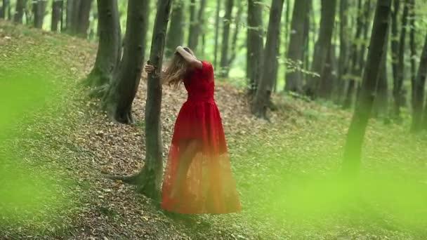 hübsche Frau erkundet schönen Wald
