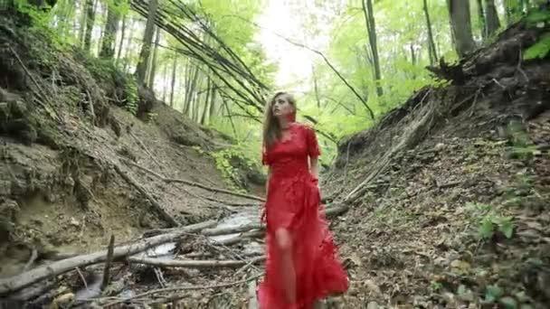 Nádherná dáma v tajemnou mlhou les