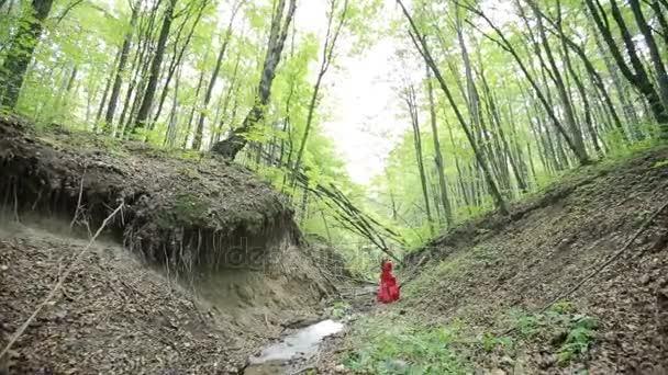 Fantasy nő elveszett az erdőben