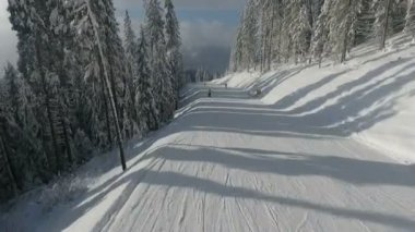 Skiers on the highway among white snowy pines. Winter ski resort. Aerial view