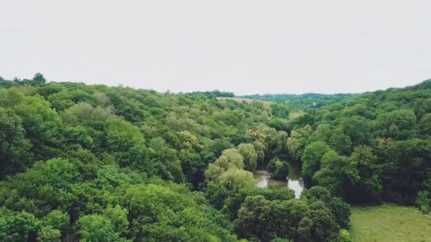 wonderfull countryside landscape with trees and river. Aerial view. Camera motion forward